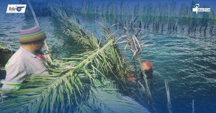 وزارة الفلاحة تتنكّر للثروة السمكية