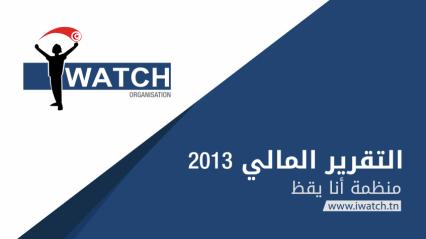 التقرير المالي 2013